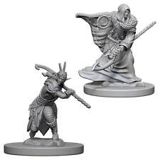 Elf Druid - Male - Wizkids Miniatures - Dungeons & Dragons - WZK72641