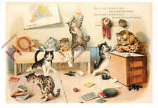 Picture Postcard-:Louis Wain, Cats School, Tas Collectables