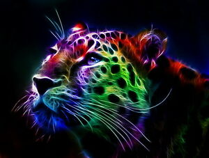 Home Art wall Decor color Tiger Oil painting abstract Picture Printed on canvas