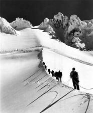 Photo. 1939. Oregon. Mt Hood.  Mazamas Climbing Hogsback To Summit