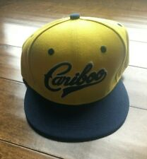 Cariboo Brewing Beer Hat! Navy Blue Yellow Embroidered Logo Snapback Adjustable