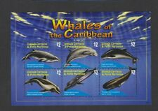 Grenada Grenadines - 2010, Whales of Caribbean sheet - MNH - SG MS4041