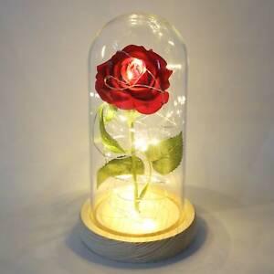 Rose im Glas Edle Kunst-Rose mit LED-Beleuchtung in Echtglas-Kuppel Nachtlicht