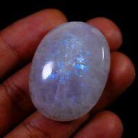 Increíble fuego Arco Iris 09X11MM oval cabochon piedras preciosas 5 Piezas Lote MM12012
