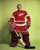 NHL 1960's HOFer Terry Sawchuk Detroit Red Wings Color 8 X 10 Photo Picture