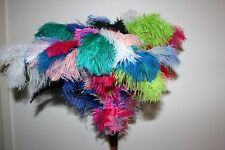 Upmarket rainbow colours first grade soft ostrich feather duster display