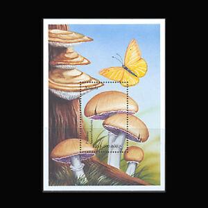 Angola, Sc #1104, MNH, 1999, S/S, Mushrooms, Fungi, Butterfly, GDD-9