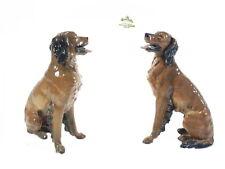 Irish Setter - Jagdhund Fa. Rosenthal Porzellan Hund