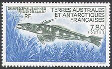 Fsat/TAAF 1991 Caballa Pez Hielo/pescado/Naturaleza/Vida Salvaje/Marine 1v (n23164)