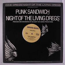 Punk Vinyl-Schallplatten