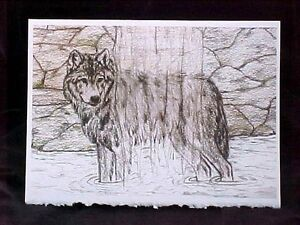 """Wolf Waterfall Art Print Card Frameable Blank Card with Envelope NEW 5"""" x 7"""""""