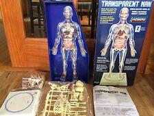 Transparent Man Human Anatomy Model Kit~Skill Level 2~NIB