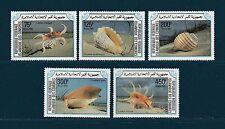 Comores république  faune  coquillage   1985   poste   **