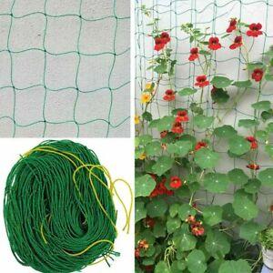 Vegetable Flower Grow Support Garden Plants Netting Climbing Net Vines Holders