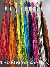 Lot 200 Feather Hair Extensions Bulk Wholesale Grizzly Natural Real RAINNB
