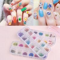 12 Colors real nail dried flowers nail art decor design diy tips manicure GX SKU