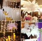 10/20/50/100 WHOLESALE White Natural Ostrich Feathers Wedding Home Party Decor