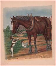 Fox Terrier Dog Greets Farm Horse, vintage print. authentic 1923