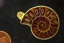 BUTW Gold Electroformrd Ammonite nautiloid fossil pendant necklace jewelry 7275P