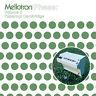 "PAPERNUT CAMBRIDGE Mellotron Phase Volume 2 vinyl 10"" + MP3 NEW lounge library"
