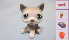 Littlest Pet Shop #70 SIBERIAN HUSKY  Puppy Dog+1 FREE Access. 100 % Authentic