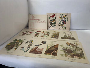 18 Best Loved Bird Paintings by Audubon Full Color Prints Partial Set of 12
