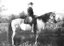 Robert E. Lee Horse Traveller PHOTO Confederate General CSA Rebel Horse