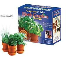 New Gourmet Chia Herb Garden Chef's Favorite