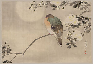Japanese Print Reproductions: Bird perched on a branch - Fine Art Print