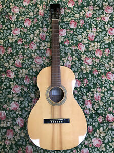 Limited Run Recording King RP-06 Acoustic Parlor Guitar Excellent + Gig Bag