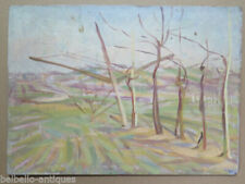 Pinturas de paisajes y marinas