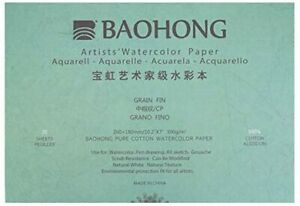 BAOHONG Artists' Grade Watercolor Painting Paper,100%Cotton Cold Press,20 Sheet