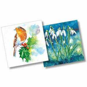 Robin and Snowdrops Christmas Cards by Rachel Toll 10 Card Pack 2 Designs