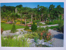 Royal Botanic Garden Edinburgh Picture Postcard 1990's Unused