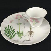 VTG Snack Plate and Cup Sigma Taste Setter Botanical Herb Valeriane Officinale