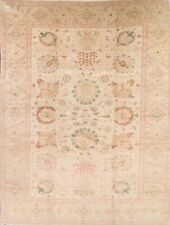 One-of-a-Kind Vegetable Dye Muted Egyptian Oriental Hand-Knotted 12x17 Wool Rug