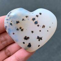 67g Natural Aquatic Plants Heart Agate Polished Love Quartz Crystal CX0121