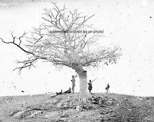 "A Lone Grave Near Antietam, Maryland 8""x 10"" Civil War Photo Picture #16"