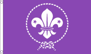 SCOUT ( SCOUTING ) PURPLE FLAG 5ft X 3ft