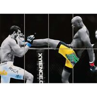 Anderson Silva UFC Kick Giant Wall Mural Art Poster Print 47x33 Inches