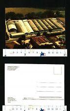 CIVITA CASTELLANA (VT) - CERAMICA FLAMINIA s.r.l. - OTTIMA CONSERVAZIONE - 29135