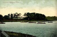 A Corner of Edgbaston Reservoir Birmingham postcard antique colour printed