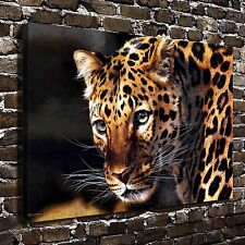 East of the Sun Cheetah Paintings HD Print on Canvas Home Decor Wall Art Picture