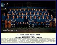 NHL 1967 - 68 St. Louis Blues Western Division Champs Team Picture 8 X 10 Photo