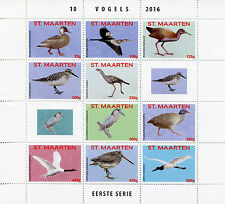 St Maarten 2016 MNH Birds 10v M/S I Vogels Ducks Waders Stamps