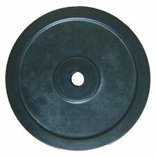 Disco in Ghisa Gommato 1,25 Kg Foro 26 mm. Peso Allenamento Home Fitness
