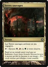 4 * Terres Sauvages - 4 * Savage Lands -  Magic mtg