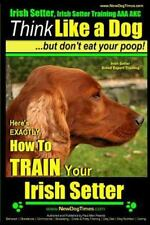 Irish Setter, Irish Setter Training Aaa Akc: Here's Exactly How to Train Your.