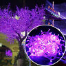 Battery Operated 10-100 LED String Fairy Lights Xmas Party Indoor/Outdoor Decor