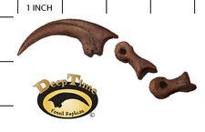 Velociraptor Killing Claw - Cast Replica, Raptor, Dinosaur Claw (SN3A)